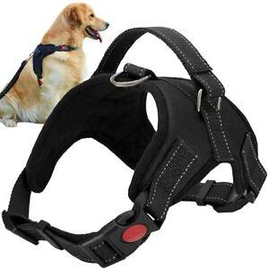 Pettorina imbracatura per Cane Cani Regolabile Guinzaglio Collare Taglia S/M/L