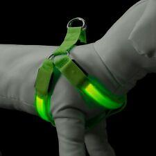 Grande Verde de Colores Iluminación LED Perro Arnés Noche Tiempo Seguridad Paseo