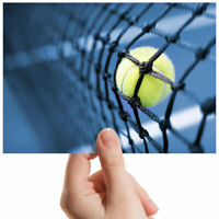 "Tennis Ball Net Wembley Let Small Photograph 6"" x 4"" Art Print Photo Gift #2359"