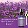 100% Pure Natural Aromatherapy Essential Oil 100ml Aroma Therapeutic Grade Gift,