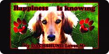 Airbrushed Dachshund dog aluminum original art license plate rescue dog 1