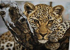 COUNTED CROSS STITCH KIT LEOPARD ANIMAL NATURE NEW