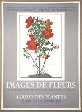 Wild Roses Rosa Punicea Original Vintage Hand Pulled Stone Litho by Mourlot 1954