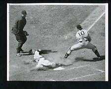 Clyde McCullough Jack Shepard Dascoli 1954 Press Photo Chicago Cubs Pirates
