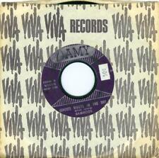 Ramrods GHOST RIDERS IN THE SKY / ZIG ZAG  Amy 5780 1961 45rpm