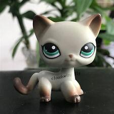Littlest Pet Shop lps Shor Hair Cat #391 Egyptian Gray Cat Green Eyes Kids Gift