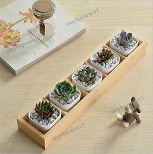 Set of 5 Cubic White Ceramic Succulent Planter Miniature Flower Pots Creative
