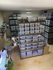 New listing Custom Order for engylkisses-4