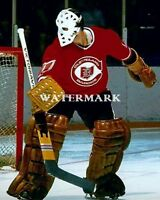 NHL Goalie Gary Edwards Cleveland Barons Color 8 X 10 Photo Picture Free Ship