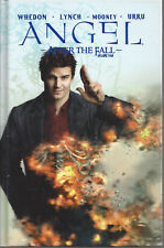 Angel After The Fall Volume 4 Hc Tp New Idw 30% Off