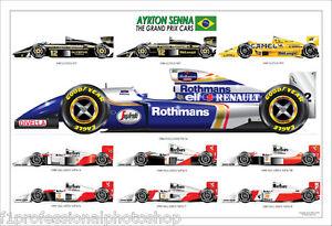 Ayrton Senna ltd.ed.signed art print-the grand prix cars - 1994 car featured
