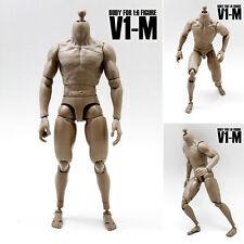 VERYHOT V1-M Dark brown muscle 1/6 BODY flexible and coordinate similar TTM19