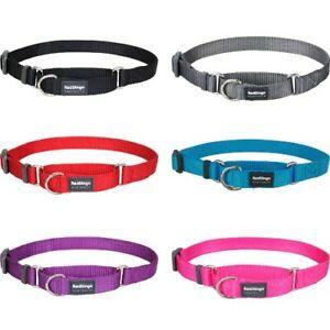 Red Dingo Plain martingale dog collar , sizes XS-LG , fully adjustable