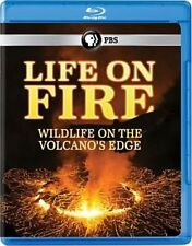 Life on Fire Wildlife on The Volcano 0841887018425 Blu Ray P H