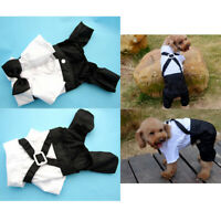 Pet Stylish Dog Outfit Suit with Bowtie for Small Dogs & Cats Costume