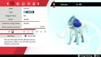 Square Shiny 6 IV Hidden Ability Suicune for Pokémon Sword and Shield
