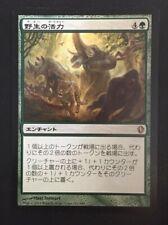 MTG magic Japanese *PRIMAL VIGOR* Commander 2013 Green Enchantment Rare
