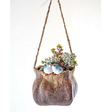 Miniature Fairy Garden Bird Friends - Hanging Succulent And Tillandsia Planter