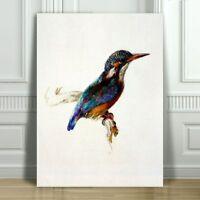 "JOHN RUSKIN -Beautiful Kingfisher Illustration - CANVAS ART PRINT POSTER -12x8"""