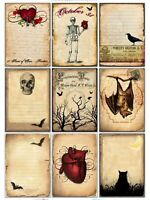 Skeleton & Bats Halloween Glossy Finish Card Making Topper Crafts Embellishment