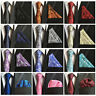Men's Tuxedo Floral Paisley Necktie Pocket Square Wedding Tie Handkerchief Set
