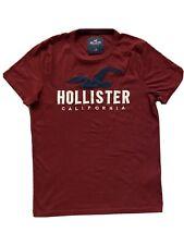 HOLLISTER T-SHIRT (men's medium)