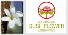 FIORI AUSTRALIANI Bush Gardenia STATICITA RAPPORTI/Rinnovato Interesse-Passione