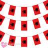 ALBANIA BUNTING 33FT ALBANIAN FLAG DECORATION 20 FLAGS 10 METRES EURO FOOTBALL