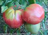 🔥 🍅 EVA PURPLE BALL Tomate *** Fleisch-Tomaten *** 10 Samen