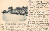 POSTCARD   EGYPT   KARNAK    Avenue  de  Sphinx