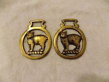 2 Vintage Brass 'Cat' Horse Medallion Bridle Saddle Ornament