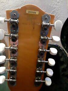 Made in Germany 12 string Hofner Acoustic guitar and case