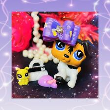 ❤️Authentic Littlest Pet Shop #803 Periwinkle Moon Eyes Jack Russell Puppy Dog❤️
