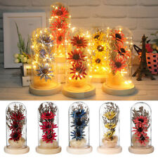 LED Lighted Eternal Dried Sunflower Glass Dome Bell Cloche With Wooden Base Gift