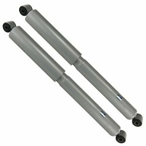 Rear Left Right Shocks for 2004-2008 Ford F-150
