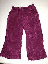 The Chidren's Place burgundy velvet 5 pocket jeans size 12 months