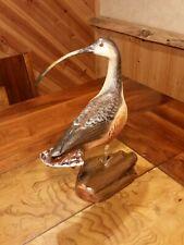 Long-billed Curlew Shorebird Decoy Wood Carving Duck Decoy Casey Edwards