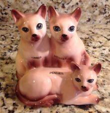 Siamese Cat Trio Piggy Bank, Vintage? Cermaic