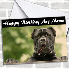 Cane Corso Dog Personalized Birthday Card
