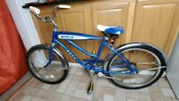 Vintage Ross Antique Convertible Blue Complete Girls Boys Children Bicycle Bike