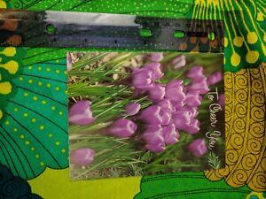 Greeting Card Unused To Cheer You Purple Crocus Flowers