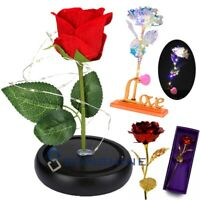 Rose Flower In Dome Glass LED Night Light Valentine's Day Xmas Decor Gift US