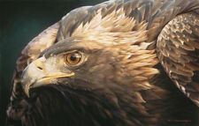 """Sovereign Gold"" Carl Brenders Fine Art 33"" Giclee Canvas - Golden Eagle"
