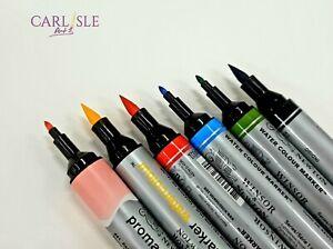 Winsor & Newton ProMarker Watercolour - Choose Your Colour