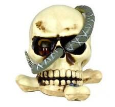 NWT-Skull & Snake Indoor Light Up Noise Animated Halloween Prop