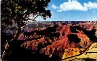 Vintage Postcard Grand Canyon National Park Arizona 4 Cents Posted 1964