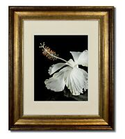 11x14 Champagne Classic Bead Picture Frame with Double Warm White Mat for 8x10