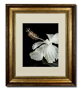 16x20 Champagne Classic Bead Picture Frame with Double Warm White Mat for 11x14