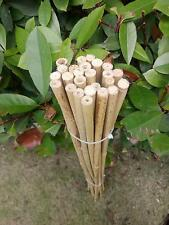 """25pcs 35""""Garden Flower Bamboo Pole Bamboo Stake Planting Support"""