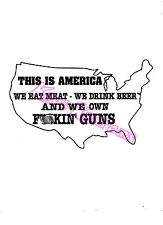 VINYL DECAL STICKER THIS IS AMERICA OWN GUNS...FUNNY...NRA...CAR TRUCK WINDOW